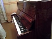 Продам пианино Беларусь,  3 педали,  б/у,  хор. состояние,  не настроено