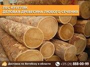 Лес кругляк с доставкой по Витебску и району.